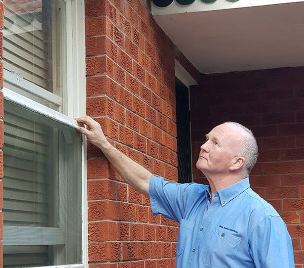 What Services Do Property Inspectors Offer?